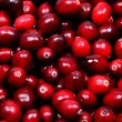 Pile of Raw Cranberries Up Close - Foto de Stock  