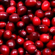 Pile of Raw Cranberries Up Close — Foto de Stock