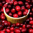 Raw Cranberries - 图库照片