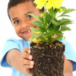Adorable Black Boy Child Holding Plant — Stock Photo