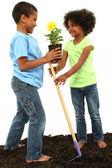 Очаровательны черный брат и сестра, посадка цветов вместе — Стоковое фото