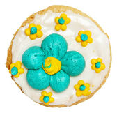 Spring Theme Frosted Cookie High Angle View Over White — Stock Photo