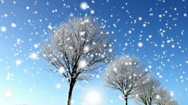 Fundo de inverno — Vídeo Stock