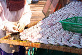 Woman arranging and drying squid — Stock Photo