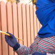 Construction worker is painting wooden fence — Stock Photo