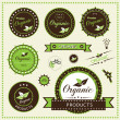Set of organic labels, Vector illustration — Stock Vector
