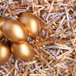 Golden eggs — Stock Photo