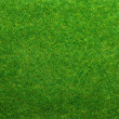 Artificial grass — Stock Photo #40539955