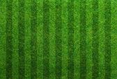Sfondo di campo calcio erba verde — Foto Stock