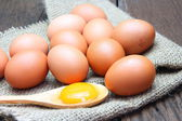 Egg yolk with chicken eggs — Stock Photo