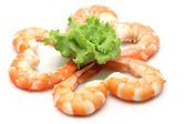 Shrimp isolated on white background — Stock Photo