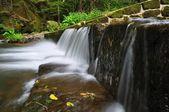 Kamenice River — Stock Photo