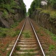 Railway into the distance — Stock Photo