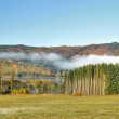 Autumn landscape with fog — Stock Photo