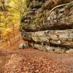 Rocks in Czech Switzerland — Stock Photo