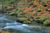 Autumn river with stones — Stock Photo