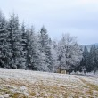 Stock Photo: Frosty winter landscape