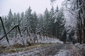 Frosty winter landscape — Stock Photo