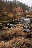 An old house on the river — Stock Photo