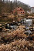 ένα παλιό σπίτι στον ποταμό — Φωτογραφία Αρχείου
