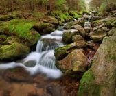 Jaře creek — Stock fotografie