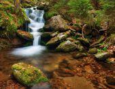Spring creek — Stock Photo