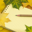 Copybook and pencil on coloured maple leaves — Stock Photo