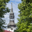 The Cathedral of Saint Mary in Tallinn — Stockfoto #39718255