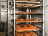 Uzený losos v peci kouření — Stock fotografie