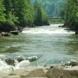 Mountain river. Ukraine. Zakarpattya. — Stock Photo #14686907