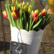 "Tulips for sale on the central square of Krakow ""The Market"" — Stock Photo"