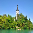 Bled Island with Pilgrimage Church of the Assumption of Mary in  — Foto de Stock