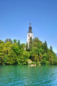 Bled Island with Pilgrimage Church of the Assumption of Mary in — Stockfoto