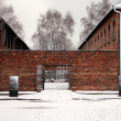 Auschwitz Birkenau Concentration Camp, Poland — Stock Photo