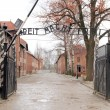 Gates to Auschwitz Birkenau Concentration Camp, Poland — Stock Photo #23993687