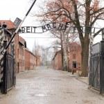 Gates to Auschwitz Birkenau Concentration Camp, Poland — Stock Photo