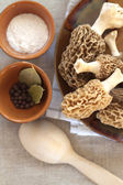Fresh morel mushrooms on a plate — Stock Photo