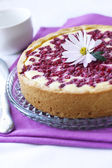 Pie with cottage cheese and redcurrant — Stock Photo