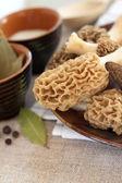Fresh morel mushrooms on a plate — Stock Photo