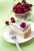 Milk souffle (bird's milk) cake  — Stock Photo