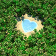 Tropical lake in form of heart on jungle — Stock Photo
