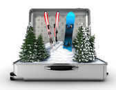 Suitcase ski and snowboard with snow inside — Stock Photo