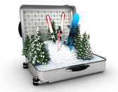 Suitcase ski and snowboard with snow inside — Stockfoto