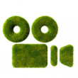 Royalty-Free Stock Photo: Grass camera icon