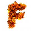Fall alphabet letter F — Stock Photo