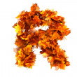 Fall alphabet letter R — Stock Photo #42570597