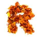 Fall alphabet letter R — Stock Photo