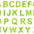 Green leaces Alphabet — Stockfoto