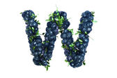 Blueberry letter W on white background — Stock Photo