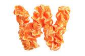 Mandarin letter W on white background — Stock Photo